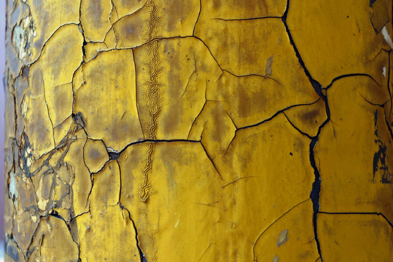 Yellow Cracked